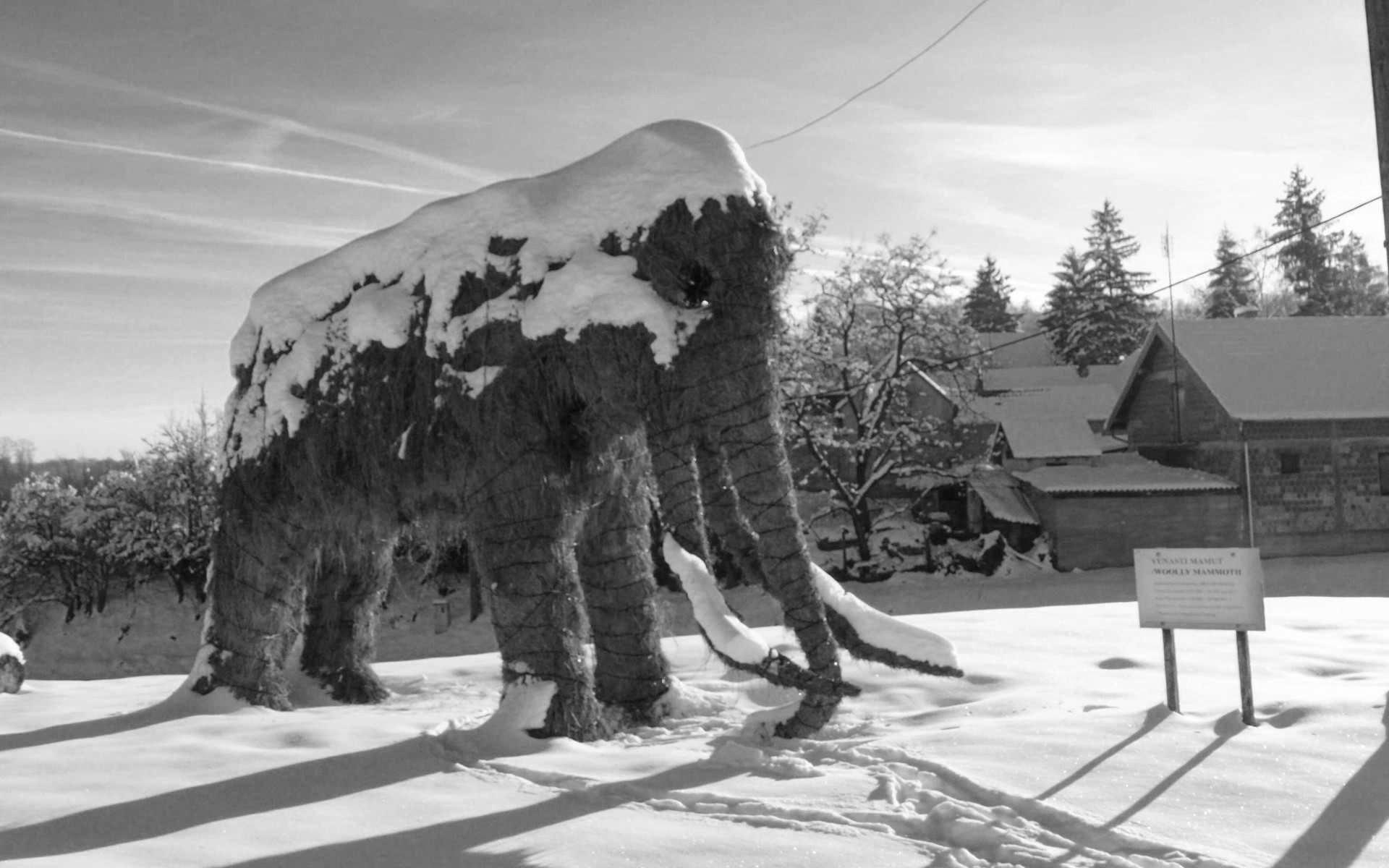 Dolina mamuta Donacija